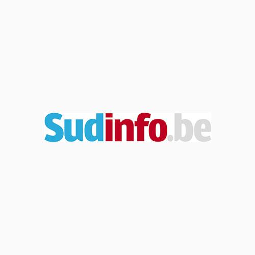 sudinfobe logo